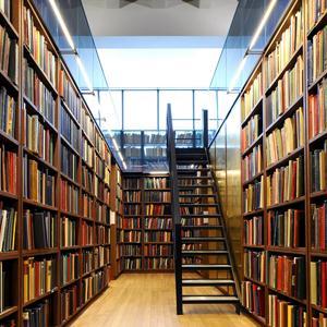 Библиотеки Плюссы